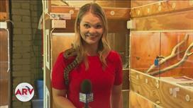 Reportera se colgó una serpiente en su cuello y la atacó en medio de un reportaje
