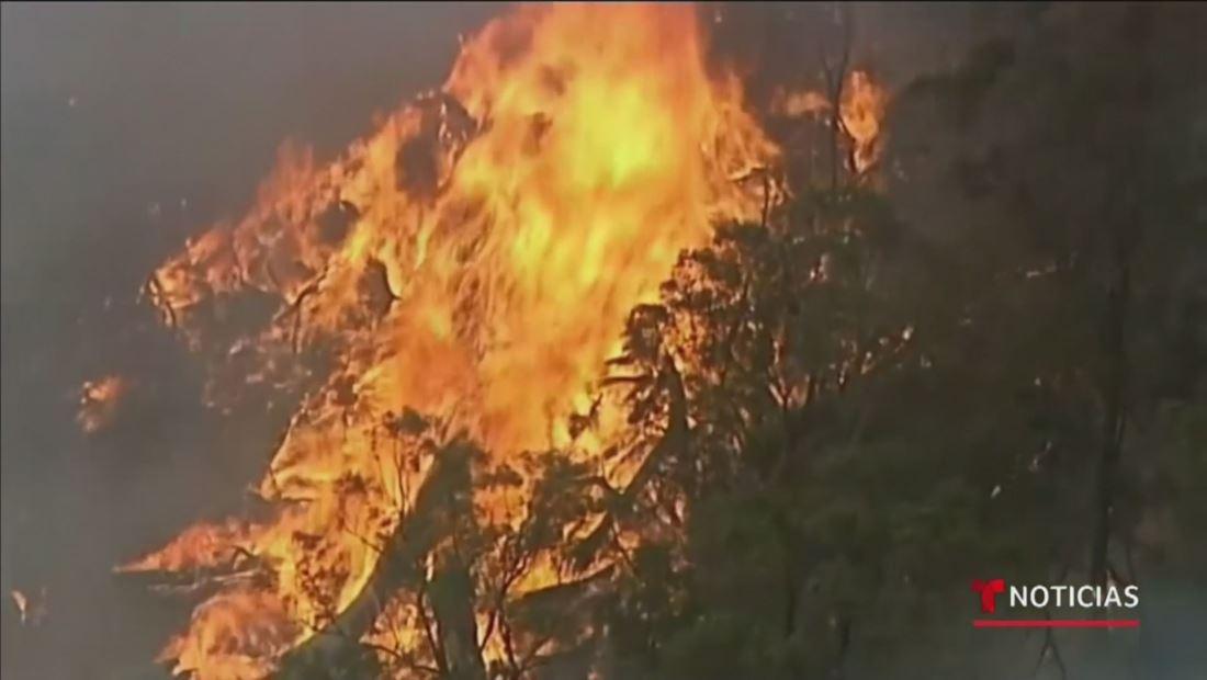 Australia cancela el tradicional espectáculo de pirotecnia de fin de año por los incendios