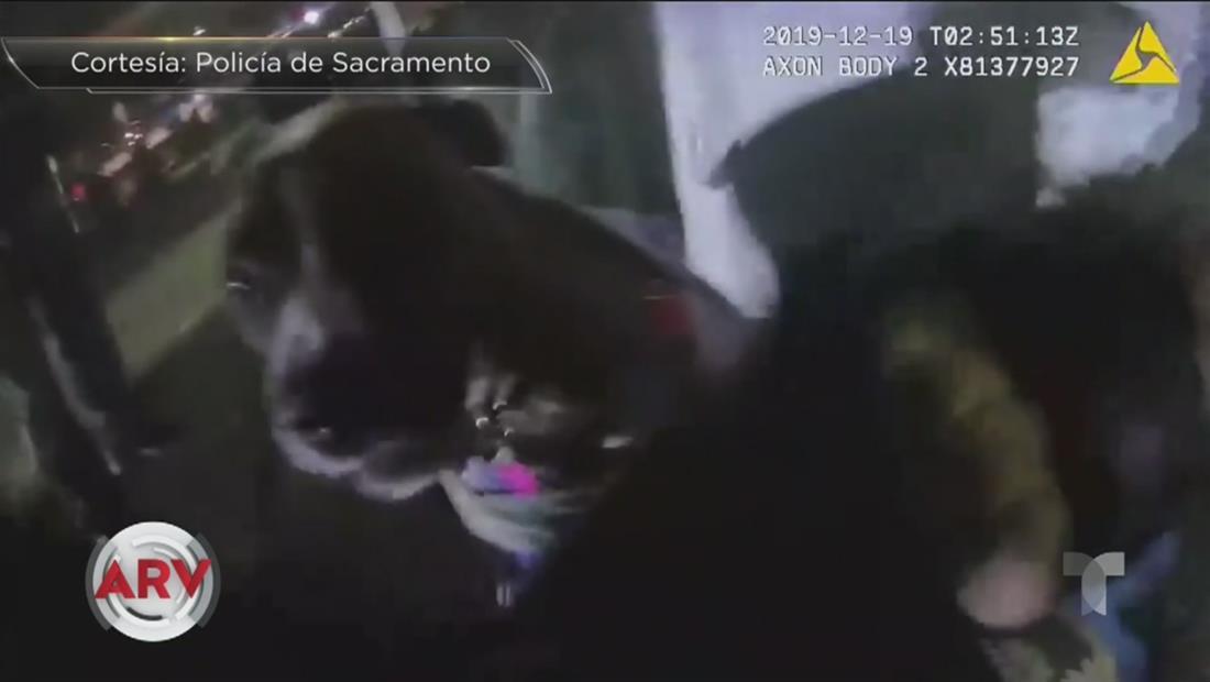 Un policía le dispara al perro de un desamparado cuando intentaba un arresto