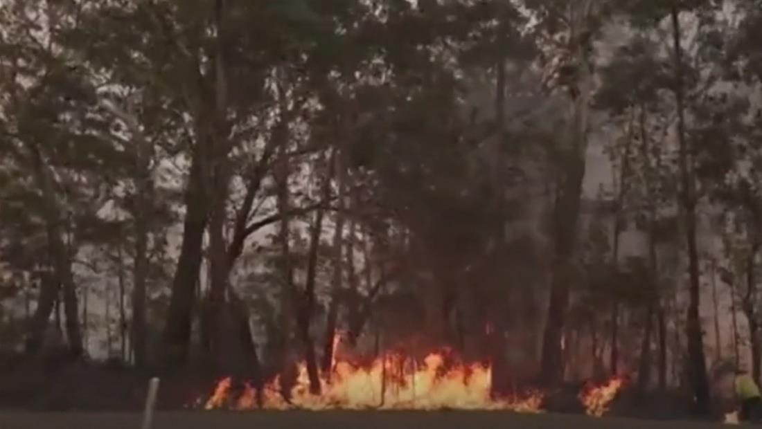 Australia destina 1,400 millones de dólares para las zonas quemadas por incendios forestales